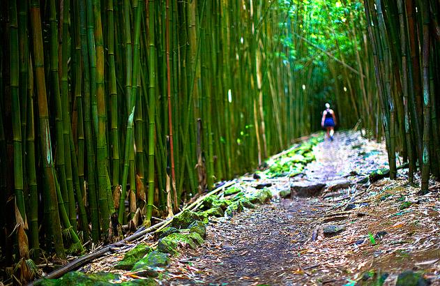 Hana maui seven sacred pools the mainland kamaainas blog
