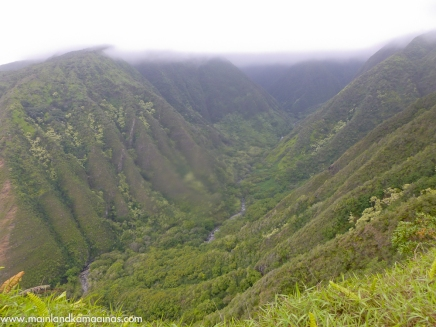 Waihee Ridge Trail, Maui Hike